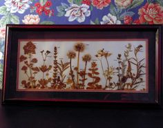 Pretty Picture Made from Dried Herbs by Wandering WildFlowers Sally M Wolfe