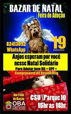 BONDE DA BARDOT:AM: Cães e gatos disponíveis para adoção em Manaus neste sábado (19/12)