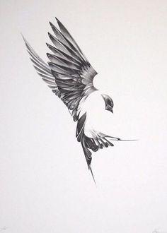 "Here's an absolutely stunning set of art prints from Von. Titled ""Flight"", and exploring the unique anatomy of birds tattoo? Future Tattoos, Love Tattoos, Beautiful Tattoos, New Tattoos, Tatoo Bird, Swallow Bird Tattoos, Swallow Tattoo Design, Phenix Tattoo, Vogel Tattoo"