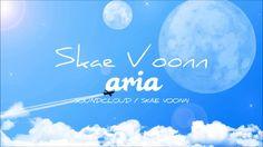 Skae Voonn - Aria