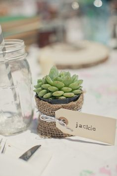 Succulents w/escort card tags - I've found a great alphabet stamp on etsy to achieve this look if you like it!