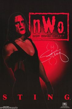 Wrestling NWO Sting Poster Nwo Wrestling, Wrestling Posters, Wrestling Superstars, Wcw Wrestlers, Sting Wcw, Attitude Era, Greg Lake, Fitness Workout For Women, Professional Wrestling