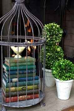 27 #Alternative Uses for Bird #Cages That You Will Fall in #Love with ...