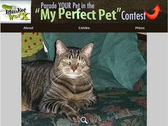 """""""She """"RESCUED"""" us!"""" - LOVE your pet? Enter The """"My Perfect Pet"""" Photo contest for chance to WIN one of the 7 Beautiful, Treasured Photo Gifts! http://www.myperfectpetcontest.com and for more great ways to showcase your photo memories go to BlanketWorx"""