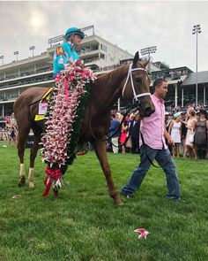 Monomoy Girl wins Race Horses, Horse Racing, Sport Of Kings, Horse Girl, Kentucky Derby, History, Photos, Animals, Legends