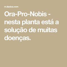 Ora-Pro-Nobis - nesta planta está a solução de muitas doenças. Ora Pro Nobis, Medicine, 30, Starbucks, Fitness, Growing Herbs, Healing Herbs, Medicinal Plants, Rice Cake Recipes