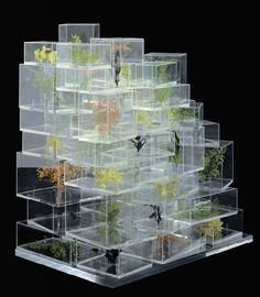 sou fujimoto. I love the concept of making a model out of clear Perspex instead of mdf: