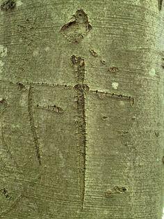 Baum geritzt# Geschnitzte Initialen# Rinde geritzt# Foto# Interessant was man an Bäumen so findet. Jewelry, Visual Arts, Modern Art, Kinetic Art, Wood Carvings, Crosses, Sculptures, Tree Structure