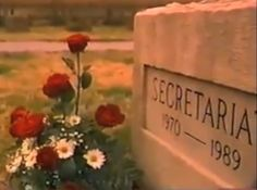 Secretariat's Grave at Claiborne Farm~~Paris, Kentucky.  I'm going there to visit on the anniversary of his passing.
