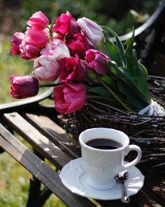Good Morning Coffee Gif, Coffee Break, Gif Café, Good Night Flowers, Coffee Flower, Beautiful Rose Flowers, Coffee Photos, Breakfast Tea, Coffee Cafe