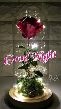 Just for you Good Night Greetings, Good Night Messages, Good Night Wishes, Good Night Thoughts, Good Night Image, Good Morning Friends Quotes, Good Night Quotes, Good Night Sleep Tight, Evening Quotes