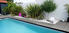 Are you planning to begin constructing a swimming pool seaside? At the moment discover eight of probably the most stunning Océwood® composite wooden swimming pool decks and uncover present developments in outside landscaping … Modern Tropical House, Tropical House Design, Tropical Houses, Building A Swimming Pool, Small Backyard Pools, Swimming Pools Backyard, Outdoor Landscaping, Outdoor Gardens, Pool Landscape Design