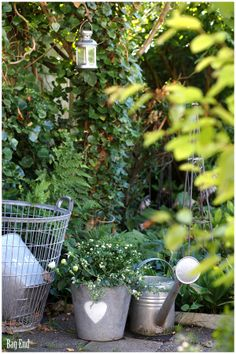 Garden zinc buckets and a wire basket Watering Cans, Wire Baskets, Buckets, Tour, Gardening, Decorations, Canning, Bag, Plants