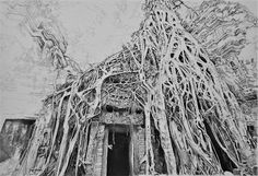 Acoustic Drawings The Shinji Ogata Gallery: Ta Prohm, Cambodia 8 タ・プローム(カンボジア) 8