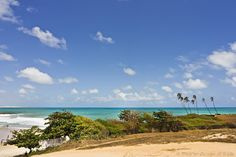 Praia dos Artistas - Rio Grande do Norte