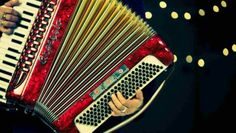 Introduction to the Accordion