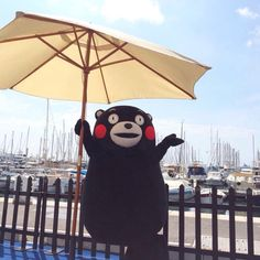 What a beautiful day to be outside with Kumamon at a marina.