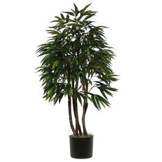 Vickerman TEX2870-07 Mango Executive Tree, 7' -- Want to know more, click on the image.
