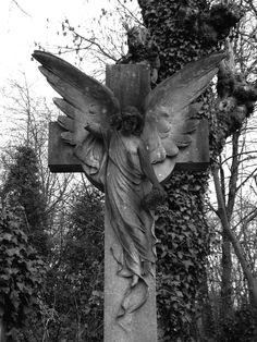 highgate cemetery, london march 2007.