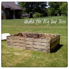 Under the Big Oak Tree: Gardening Journal ~ Recycled Pallets for Garden Beds