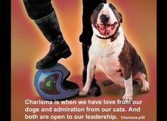 Charisma is when we have love from our dogs and admiration from our cats. And both are open to our leadership. From Michael Grinder's book: Charisma p35  Three ingredients are mentioned? Who do you know that has one ingredient? Who do you know that has two of the ingredients? Who has all three?