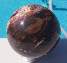 "Petrified Wood Sphere 3 1/2"" Diameter (SP-MFR061)"