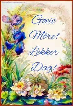 Lekker Dag, Evening Greetings, Goeie More, Afrikaans, Deep Thoughts, Good Morning, Qoutes, Encouragement, Advice