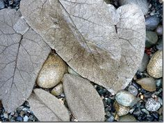 cement leaves tutorial