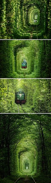 "Ukraine's ""#love tunnel"", near Kiev"