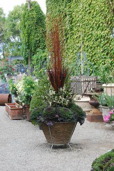 Fall container garden, Branch Studio Planter, Detroit Garden Work, Arrangement by Deborah Silver