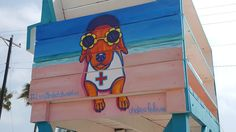 #lucy is now immortalised on a beach lifeguard chair on #south Padre..go by and say hello