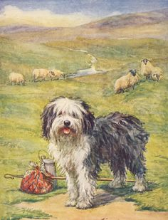 The Prize Annual 1930 - Old English Sheepdog. #vintage, #animals, #canis lupus familiaris