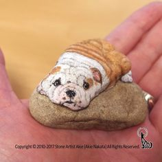 Japanese Stone Artist Paints Realistic Looking Animals Onto Smooth Rocks