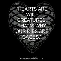 Hearts are wild creatures, that's why our ribs are cages. Such a cool quote for a rib tattoo Great Quotes, Quotes To Live By, Inspirational Quotes, Quirky Quotes, Awesome Quotes, Motivational Quotes, Words Quotes, Wise Words, Sayings