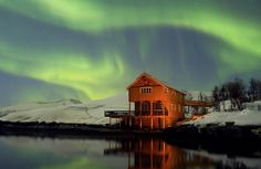 The northern lights, also known as aurora borealis, illuminate the night sky in this beautiful film shot in Northern Norway. Description from themistsofavalon.net. I searched for this on bing.com/images