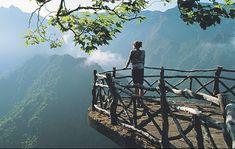 Beautiful, wonderful Madeira.