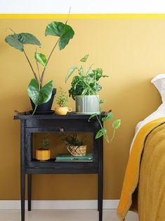 Home - Room & Bedrooms Decor Ideas Interior Design Inspiration, Room Inspiration, Home Bedroom, Bedroom Decor, Geek House, Home Wall Colour, Bedroom Photography, Cheap Closet, Yellow Interior