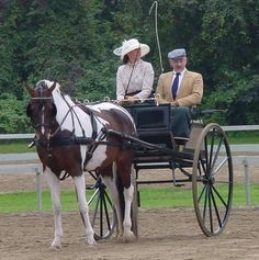 my first horse trainer and her carriage horse, Colour