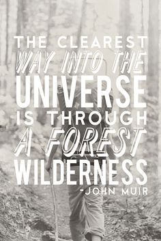 """The clearest way into the universe is through a forest wilderness"" ~John Muir"