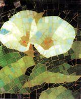 Imelda McHugh, lillies