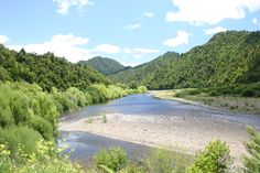 Kayak Australia Waioeka Gorge on the road from Opotiki to Gisborne on the east coast of the North Island. It is the site of the ha Waioeka Nature Reserve, the largest of its type in New Zealand. Oregon Coast Camping, Southern Oregon Coast, Camping Tours, Kayak Camping, See The Sun, Outdoor Retreat, Camping Activities, Picnic Area, South Island