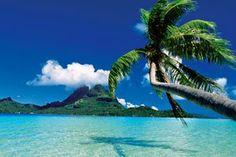 Cudowne zdjęcia z tropikalnych wysp. Możesz je pobrać w formie tapet z najszej strony - wystaczy kliknąć w ta miniaturę / tropical views! #beach #summer #travel #plaza #wakacje #podroze #tapetynapulpit #wallpapers