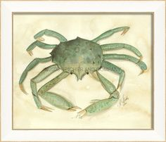 Crab 5 Wall Art from www.wellappointedhouse.com #homedecor #decorate #wallart #wallbrackets #plateholders