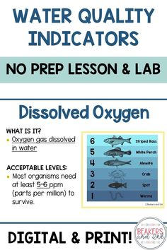 Help students to understand the connection with water quality and the health of our ecosystem! This complete, no-prep lesson on water quality indicators includes a presentation, water chemistry lab, and notes! High School Biology, Biology Teacher, Middle School Science, Elementary Science, Chemistry Lessons, Chemistry Labs, Technology Lessons, Science And Technology, Science Resources