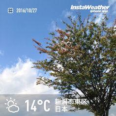 おはようございます! 晴れてますが少し寒いです〜