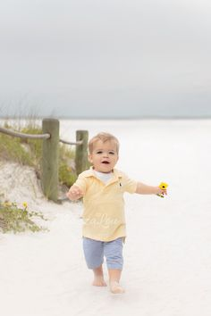 Family Photographer  Children's Photographer www.mazzalou.com  Sarasota, South West Florida Photographer