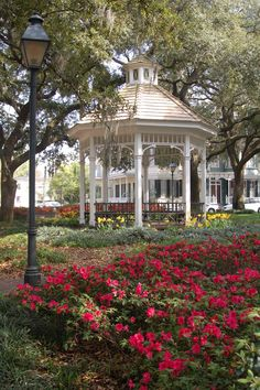 Whitfield Square, Savannah, GA in springtime. Southern Homes, Southern Belle, Southern Charm, Southern Hospitality, Simply Southern, Southern Living, Georgia Usa, Savannah Georgia Homes, Georgia On My Mind