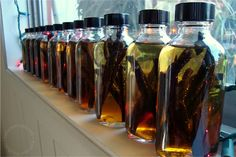 Homemade vanilla extract for gifts