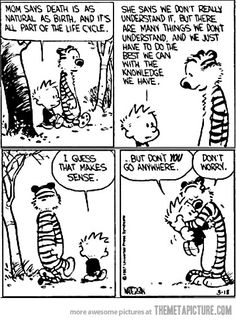 Calvin and Hobbes - Don't you go anywhere