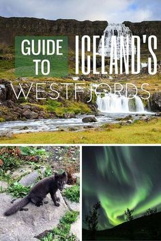 recommends things to see and do in Iceland Westfjords Iceland Travel Tips, Iceland Road Trip, Oh The Places You'll Go, Cool Places To Visit, Places To Travel, Travel Destinations, Island Travel, West Iceland, Iceland In June